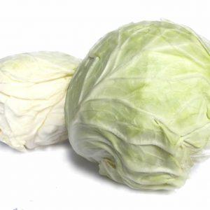 CABBAGE ROUND - KOBIS BULAT 包菜 / KG