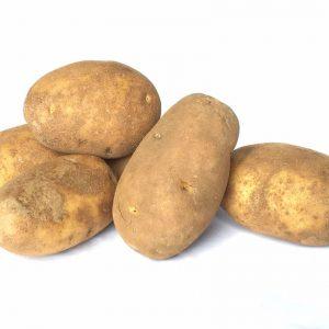 POTATO RUSSET - IDAHO USA 美国土豆 22.5KG / KG